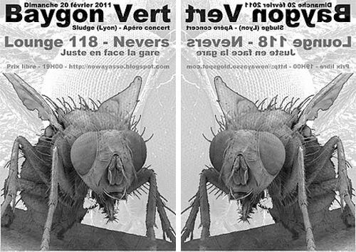 Flyer Nevers 2